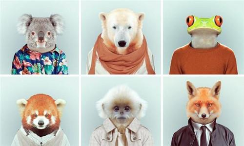 时髦透顶的动物肖像-张雄艺术网
