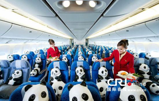 图为熊猫乘坐飞机飞往香港